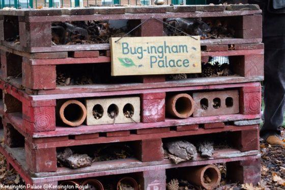 Bug ingham Palace