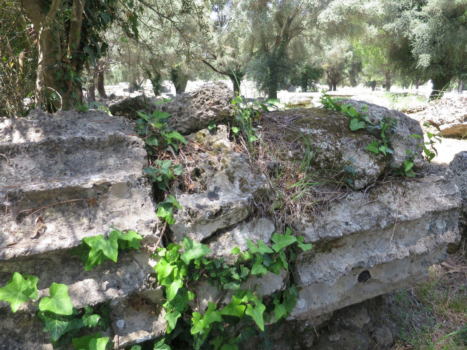 オリンピア遺跡 ゼウスの神殿の石